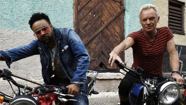 sting e shaggy